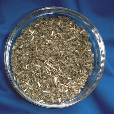 Marriubo volgare (Marrubium vulgare)