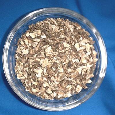 Angelikawurzel (Angelicae radix)