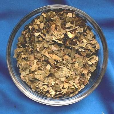 Feuilles de ginkgo (Ginkgo folium)
