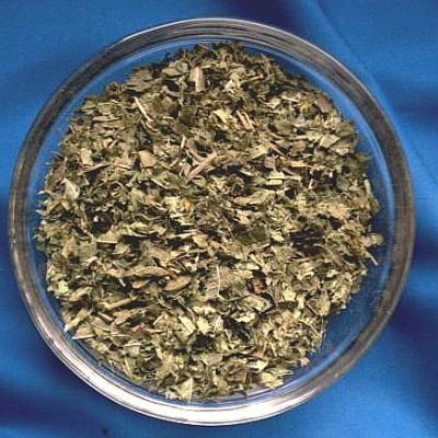 Verveine (Verbena officinalis)