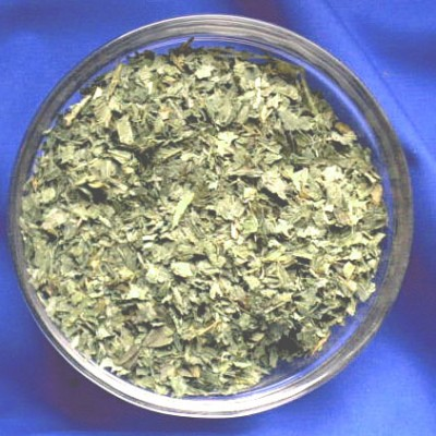 Lemon Balm (Melissa officinalis) Bag with 250 g.