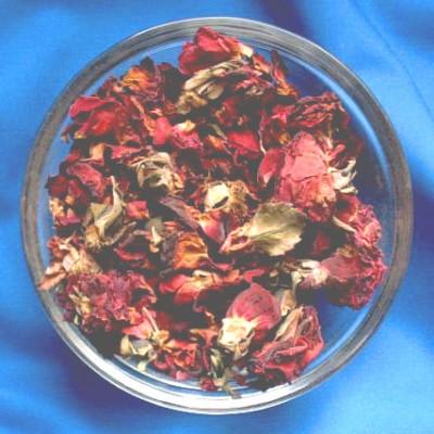 Fleurs de rose (Flores Rosae centifoliae)
