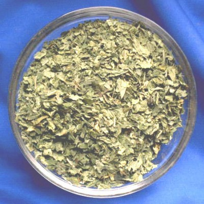 Pfefferminze ( Mentha piperita) Beutel mit 1000 g.