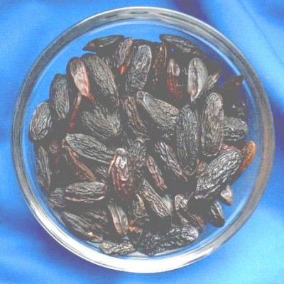 Tonka Beans (Coumarouna odorata) Bag with 1000 g.