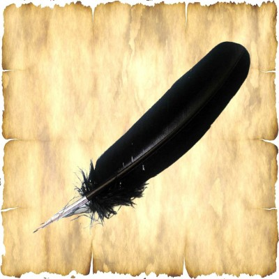 Quill with Brass Nib - Black
