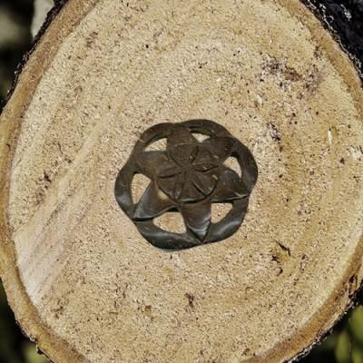 Ciondolo buona stella di cocco legno
