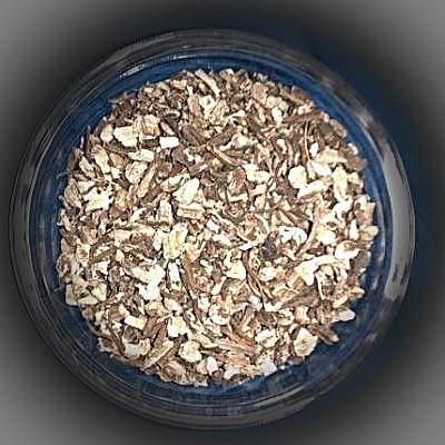 Angelica Root (Angelicae radix)