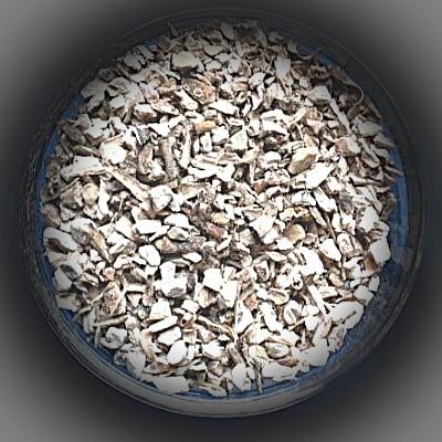 Acore (Calami rhizoma)