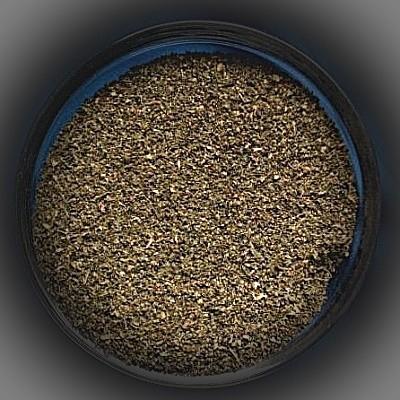 Brennesselsamen (Urtica dioica)