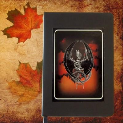 Libro delle ombre Fire Dragon Din A 5