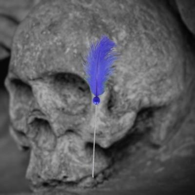 Voodoo Aiguille bleu