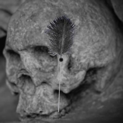 Voodoo Needle, black