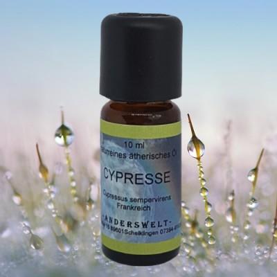 Ätherisches Öl Cypresse (Cupressus sempervirens)