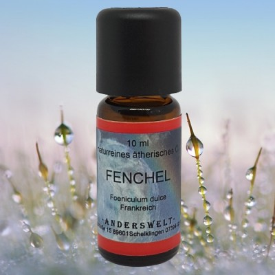 Essential Oil Fennel Sweet (Foeniculum dulce)