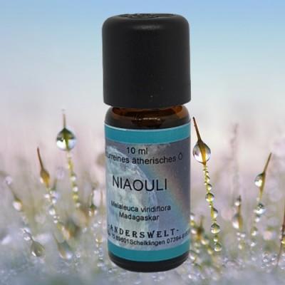 Olio essenziale Niaouli (Melaleuca viridiflora)