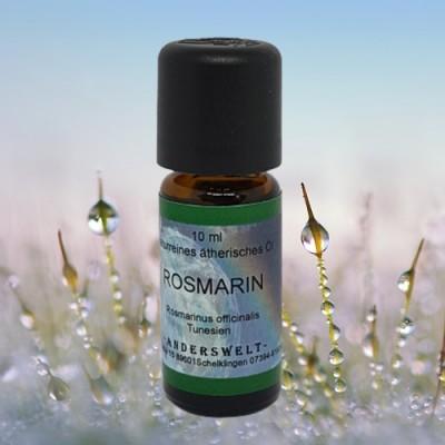 Ätherisches Öl Rosmarin (Rosmarinus officinalis)