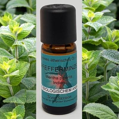 Essential Oil Peppermint Bio (Mentha arvensis) 10 ml