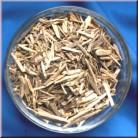 Muira Puama - Potency Wood