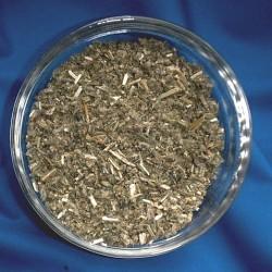 Horehound white cutted (Marrubium vulgare)