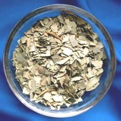 Eucalyptus (Eucalyptus) Sachet de 50 g.