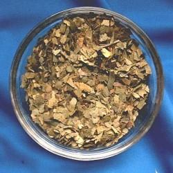 Ginkgo leaves (Ginkgo folium)