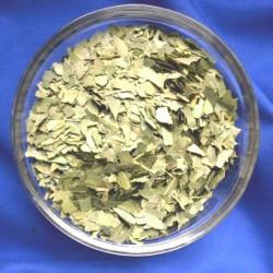 Lorbeerblätter (Syzygium polyanthum) Beutel mit 50 g.