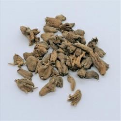 Lucky Hand Root (Racine de la main chanceuse) 25 g