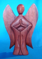Angel / Drud of wood