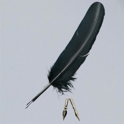 Penna con piume di tacchino e 2 scrittura di ricambio