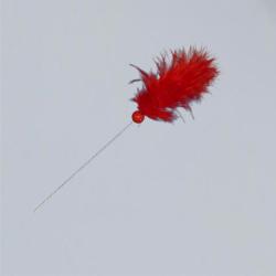 Voodoo Aiguille rouge