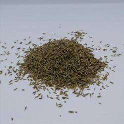 Keuzkümmel (Cuminum cyminum) Beutel mit 1000 g.